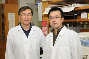 Dr. Hsu with trainee