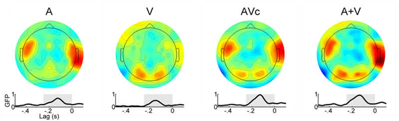 EEG heat plots of multisensory regions