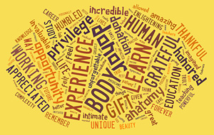 Image of word cloud: Experience, donor, body, learn, gift, grateful, human