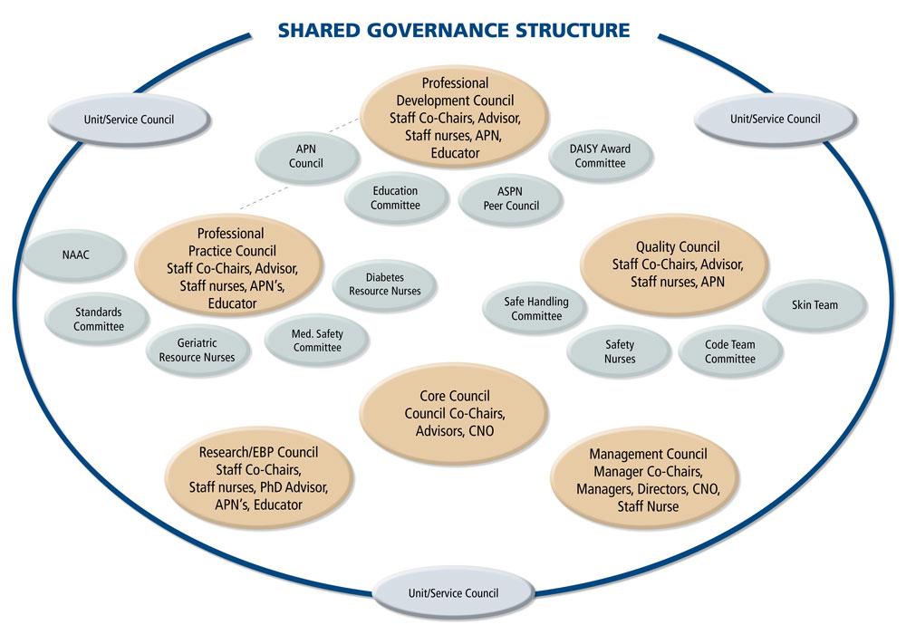governance structures in nursing