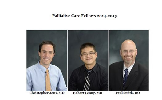 2014-15 fellows