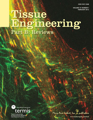 Cover Art for Tissue Engineering, Part B