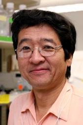 Hironao Wakabayashi, M.D., Ph.D.